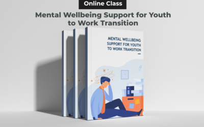 Mental Wellbeing Support for Youth to Work Transition